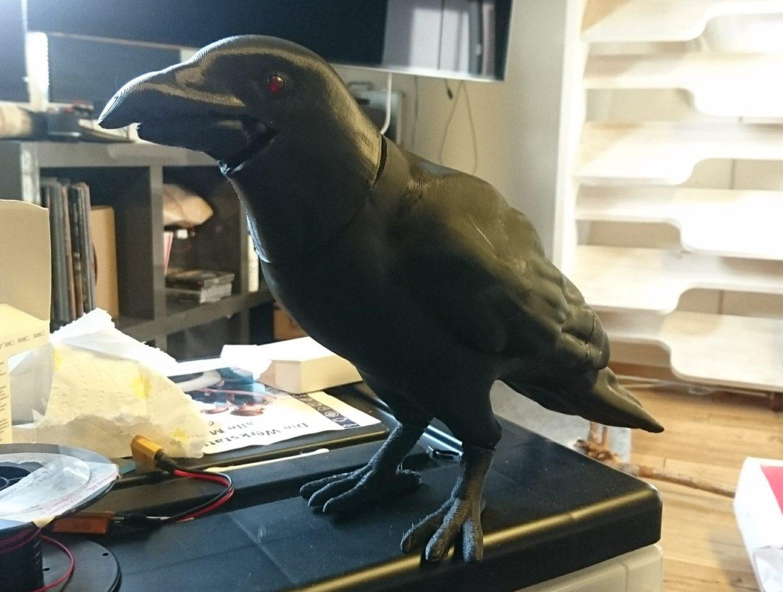 Odins crow